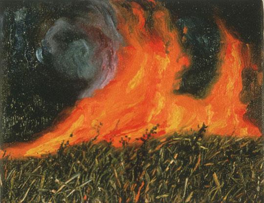 Jennifer Walton - Paintings of Forest Fires: www.jenniferwalton.com/Index-Forest-Fires.html