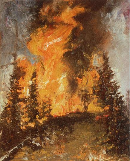 Forest Fire Paintings By Jennifer Walton